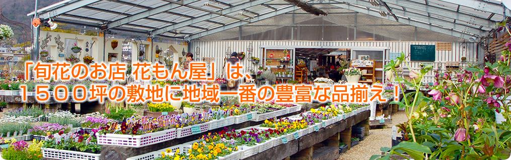 「花もん屋」は、1500坪の敷地に地域一番の豊富な品揃え!